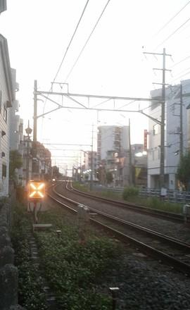 DSC_0337 のコピー.jpg