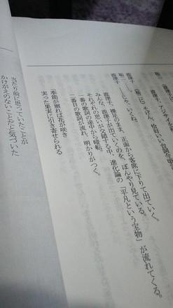 DSC_0455.JPG