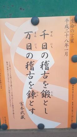 DSC_0568.JPG
