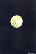 枯木に月s17.06.17s0028.jpg